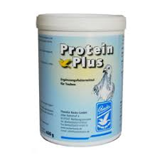 BACKS - Protein Plus